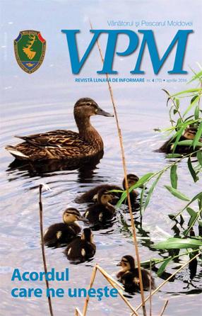Revista SVPM